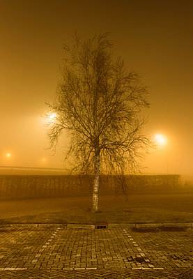Heavy fog at parking place, Heerenveen, Friesland, Netherlands - p429m1569775 by Mischa Keijser