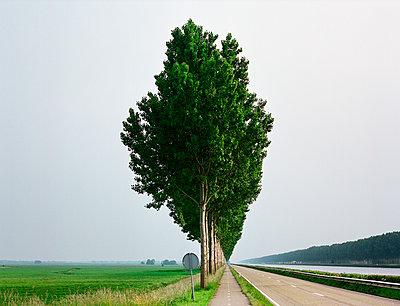 Amsterdam–Rhine Canal - p1132m1016970 by Mischa Keijser
