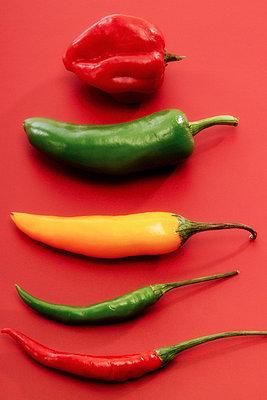 Chilies - p3001365f by Dieter Heinemann