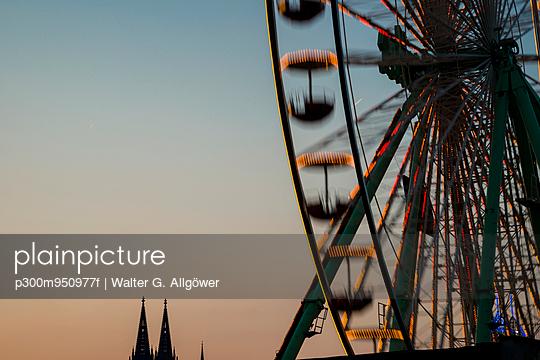 p300m950977f von Walter G. Allgöwer
