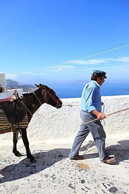 Man and his donkey - p0452255 by Jasmin Sander