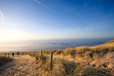 Path in the dunes, Egmond aan Zee, The Netherlands - p8960657 by Allard de Witte