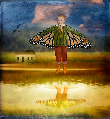Boy with butterfly wings - p1693m2292896 by Fran Forman