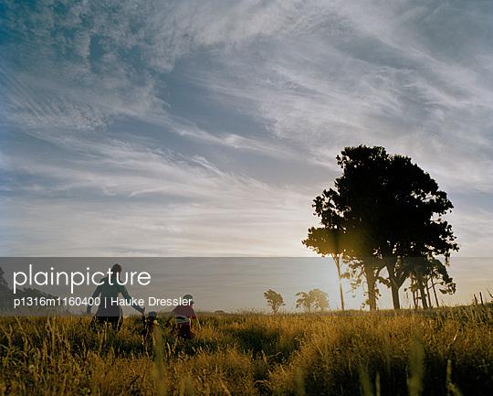 Mutter und Kinder wandern durch hohes Gras bei Sonnenuntergang bei Haast, Südinsel, Neuseeland - p1316m1160400 von Hauke Dressler