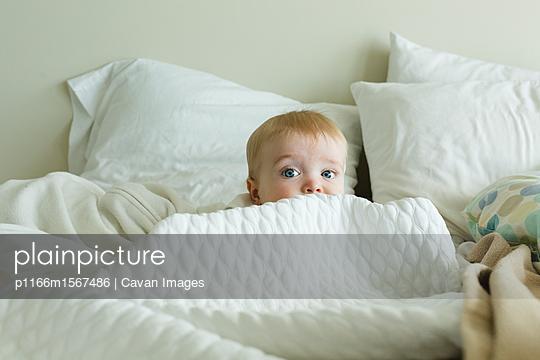 p1166m1567486 von Cavan Images