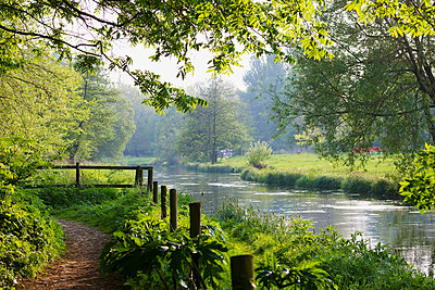 Water meadows along the River Itchen on a summer day; Winchester, Hampshire, England - p442m961562 by Chris Caldicott