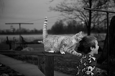 Boy with Cat - p1169m955996 by Tytia Habing