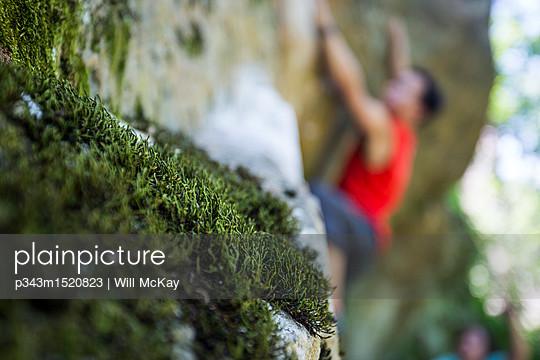 p343m1520823 von Will McKay