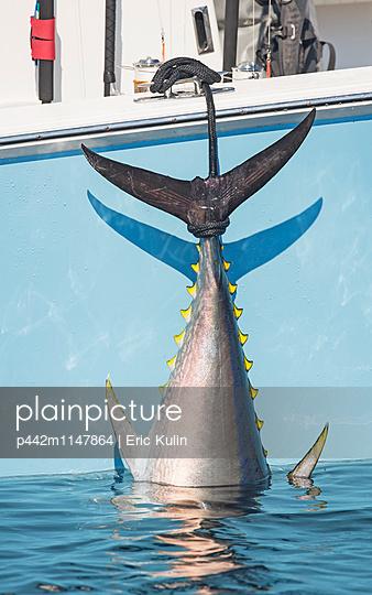 p442m1147864 von Eric Kulin