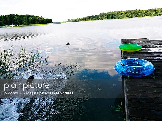 Hund badet im Schaalsee - p551m1585023 von Kai Peters