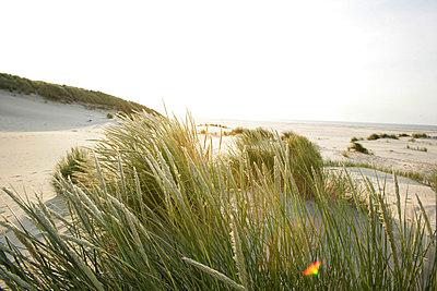 Holländische Küste - p5670703 von ofoulon