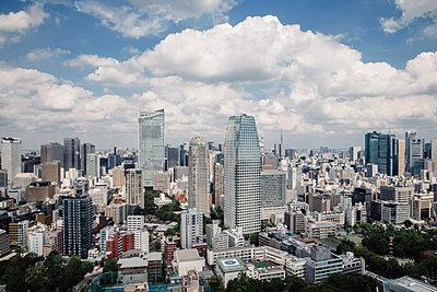 View of Tokyo - p1126m1200752 by Tina Sturzenegger
