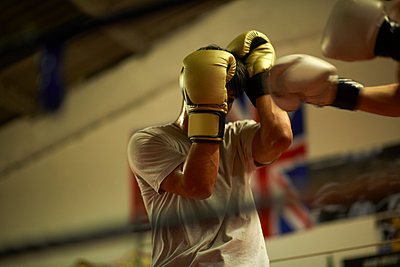 Two boxers sparring in boxing ring - p429m1175188 by Peter Muller