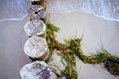 Beach - p1053m918400 by Joern Rynio