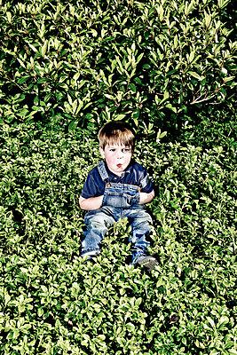 Boy in a hedge - p1221m1041719 by Frank Lothar Lange