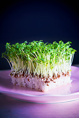 Cress - p1149m2086692 by Yvonne Röder