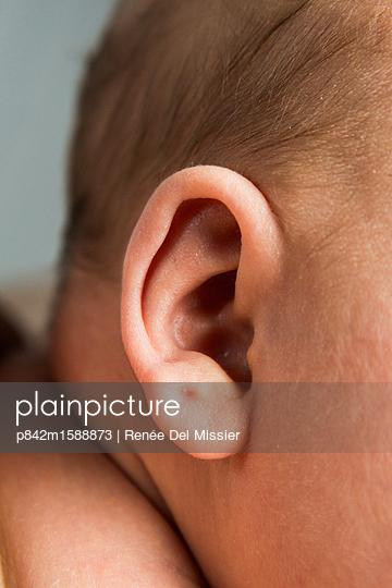 Ohr eines Babys Nahaufnahme - p842m1588873 von Renée Del Missier