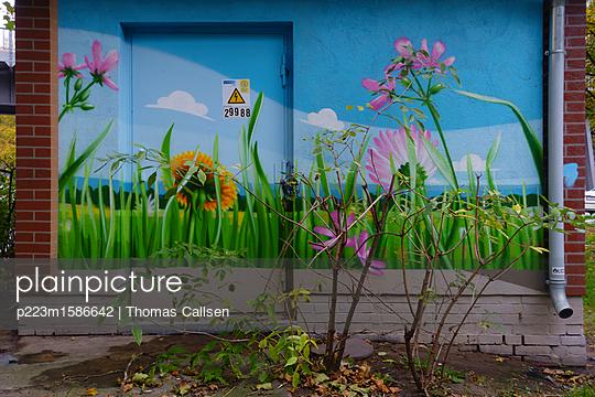 Professionelles Graffiti und reales Wachstum. - p223m1586642 von Thomas Callsen