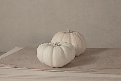 Painterly image of Pumpkin Baby Boo - p1470m1539196 by julie davenport