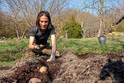 Man planting potato - p300m2104173 by Nabiha Dahhan