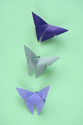 Schmetterlinge    - p450m2065256 von Hanka Steidle