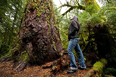 Cathedral Grove, MacMillan Provincial Park, Vancouver Island, British Columbia, Canada; Woman looking at tree - p4429603f by Design Pics