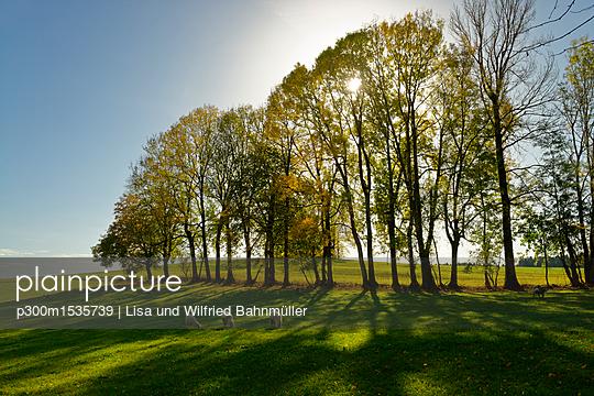 p300m1535739 von Lisa und Wilfried Bahnmüller