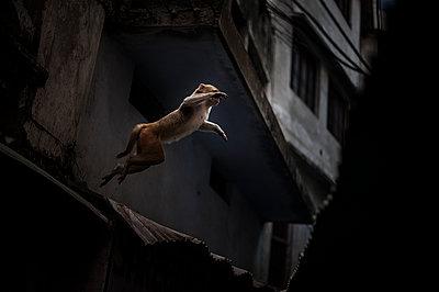 Varanasi - p1007m1060003 by Tilby Vattard