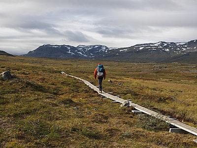 Hiker walking on trail in Lapland - p1216m2184540 von Céleste Manet