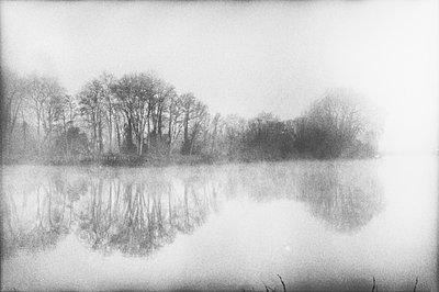 Teich im Nebel - p567m1056327 von Gabrielle Duplantier