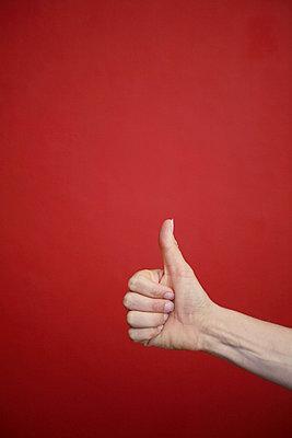 Thumb - p4540376 by Lubitz + Dorner