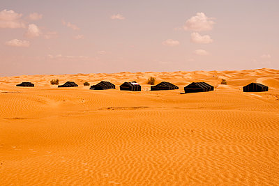 Berber tents - p548m911687 by Fred Leveugle