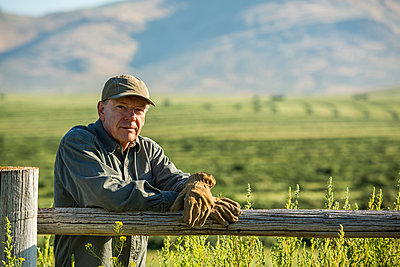 Caucasian farmer wearing gloves leaning on wooden fence - p555m1303717 by Steve Smith