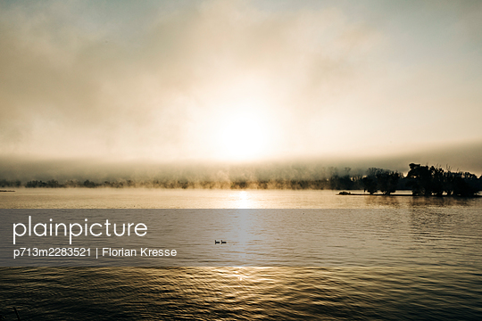 Fog and sunset on the Rhine  - p713m2283521 by Florian Kresse