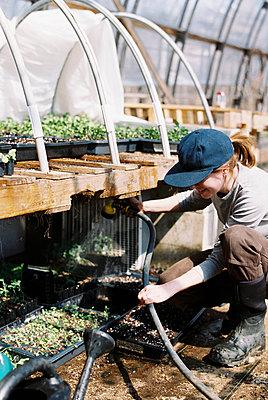 Commercial female flower farmer watering her seedlings with hose - p1166m2268656 by Cavan Images
