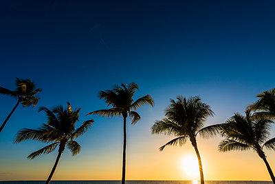 Sonnenuntergang - p488m1444437 von Bias