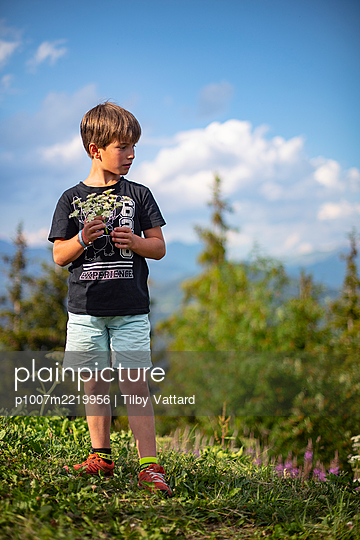 Boy picking flowers in the mountains, France - p1007m2219956 by Tilby Vattard