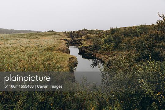 p1166m1555483 von Cavan Images