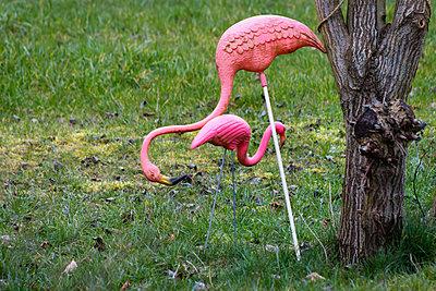 Flamingo - p417m2158788 von Pat Meise