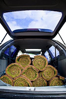 Grass rolls ready for transportation in car - p1687m2295147 by Katja Kircher