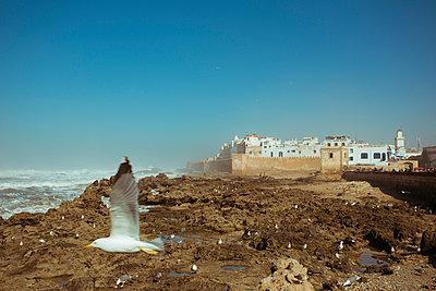 Essaouira - p432m887225 by mia takahara