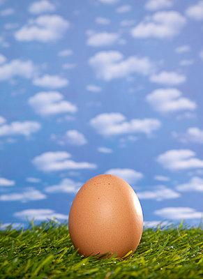 Egg - p382m754367 by Anna Matzen