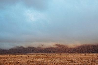 Wüste - p1065m885961 von KNSY Bande