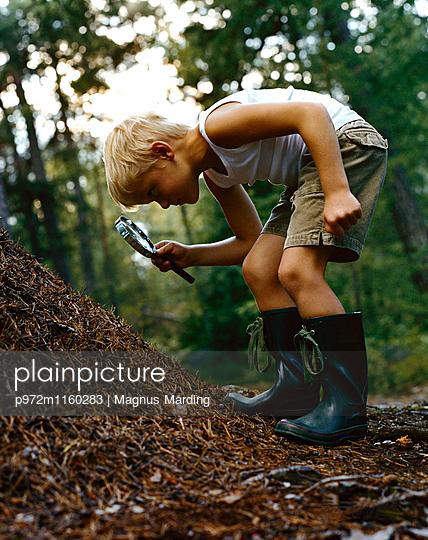 Blonder Junge an einem Ameisenhaufen mit Lupe  - p972m1160283 von Magnus Mårding
