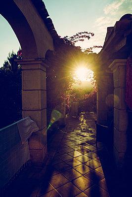 Abendsonne - p904m1044990 von Stefanie Päffgen