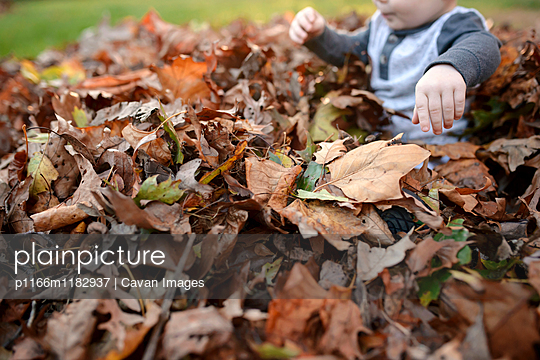 p1166m1182937 von Cavan Images