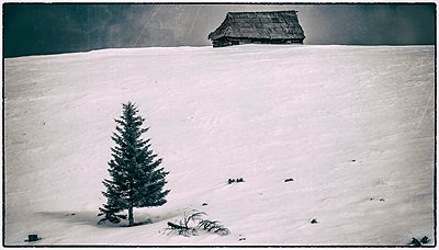 Wooden chalet - p1072m1022074 by Grigore Roibu