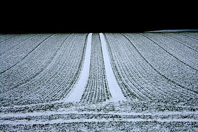 Tracks in snowcapped field - p1268m1111509 by Mastahkid