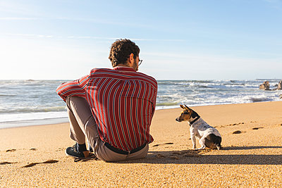 Portugal, Porto, back view of young man sitting on the beach with his dog - p300m2104240 by William Perugini
