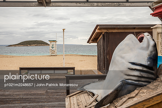 p1021m2248657 by John-Patrick Morarescu